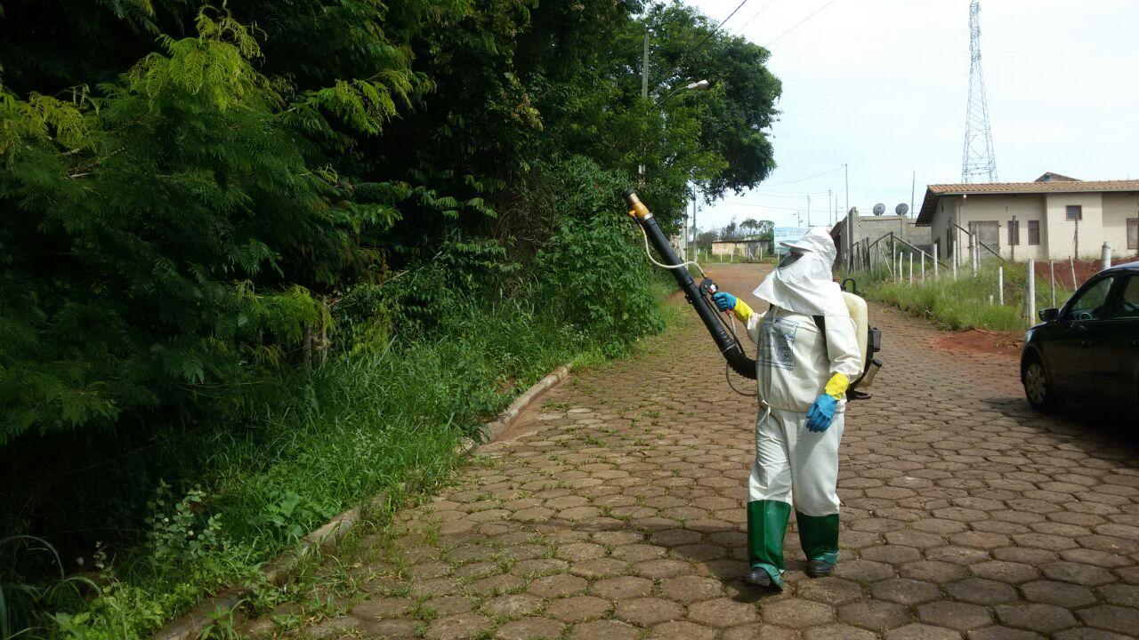 Macaco é encontrado morto e Prefeitura faz força-tarefa contra febre amarela