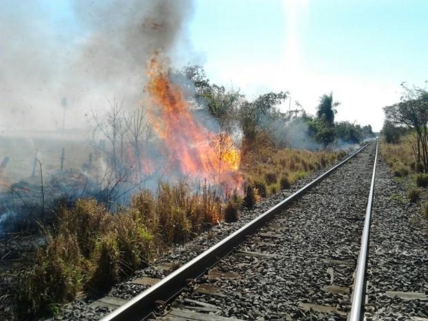 Vale promove campanha de combate às queimadas ao longo da ferrovia