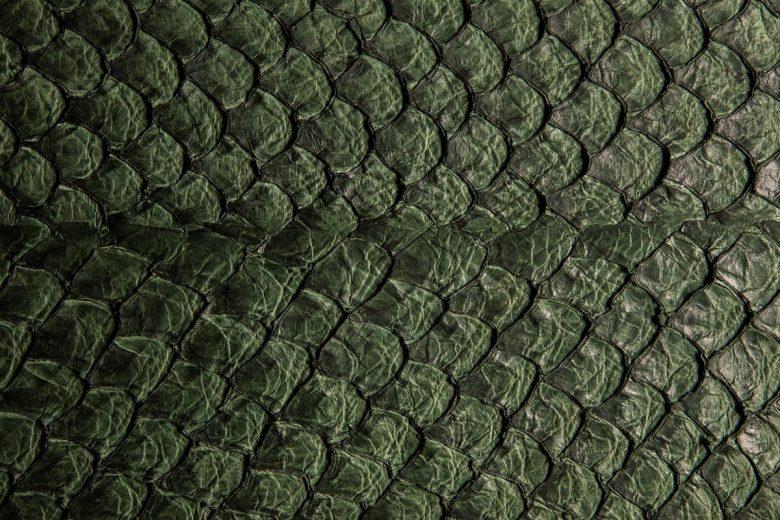 Pele de peixe é usada como material para a moda sustentável