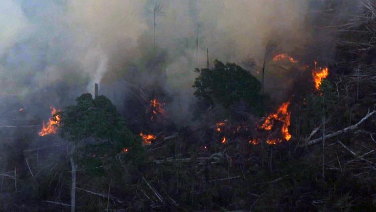 Quatro estados pedem ajuda das Forças Armadas para combate a incêndios na Amazônia