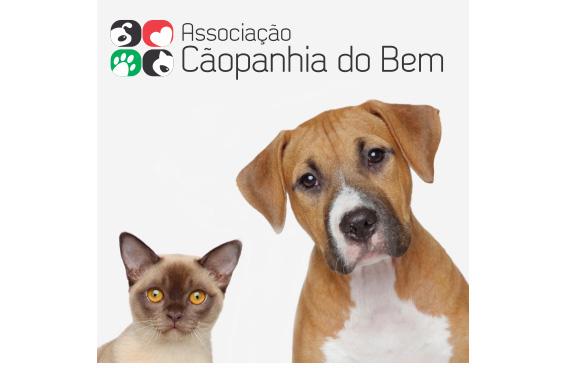 """Sicoob Credimepi lança campanha """"Cooperar é bom pra cachorro"""""""