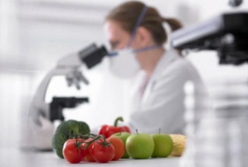 Tia Eliana Indústria de Salgados e Doces contrata engenheiro de alimentos
