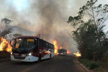 Vários focos de incêndio atingem Conceição do Mato Dentro