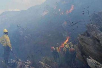 Parque Nacional da Serra do Cipó é reaberto para visitas após incêndio