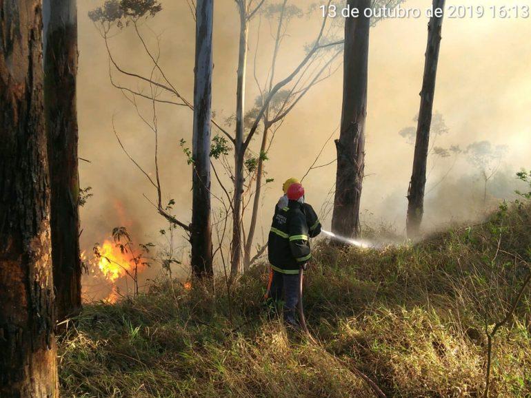 Incêndio em Barão de Cocais queima mais de 30 hectares de mata fechada