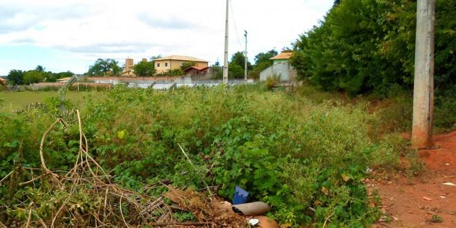 Prazo para que proprietários limpem terrenos em Itabira termina no dia 22