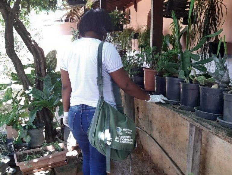 Levantamento da Prefeitura indica que Ipatinga vive surto da dengue