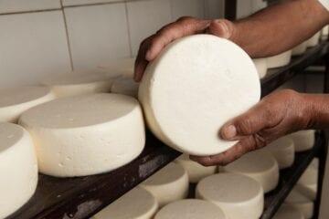 Pandemia: Anglo American destina R$ 1 milhão para queijeiros do Serro