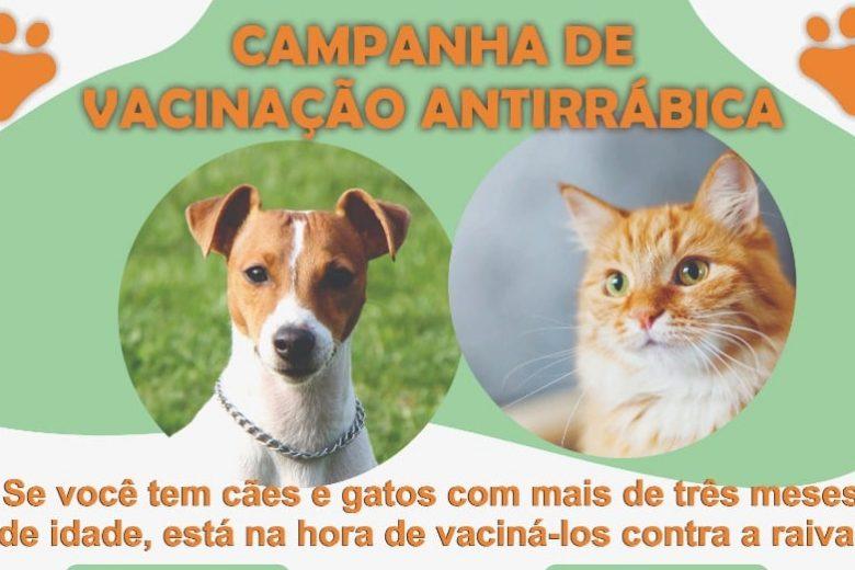 Vacinação Antirrábica: Monlevade imuniza cães e gatos nos dias 18 e 25 de setembro