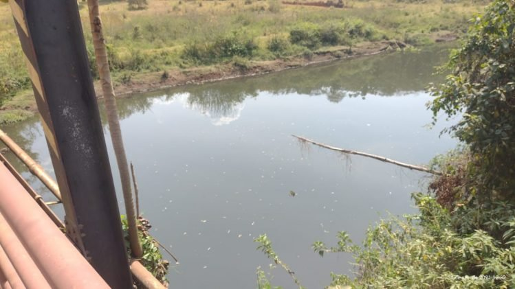 Resgate é acionado após homem desaparecer no Rio Santa Bárbara