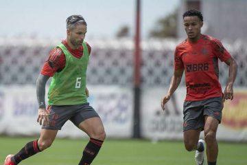 Flamengo: Diego pode voltar no domingo e David Luiz já treina em campo