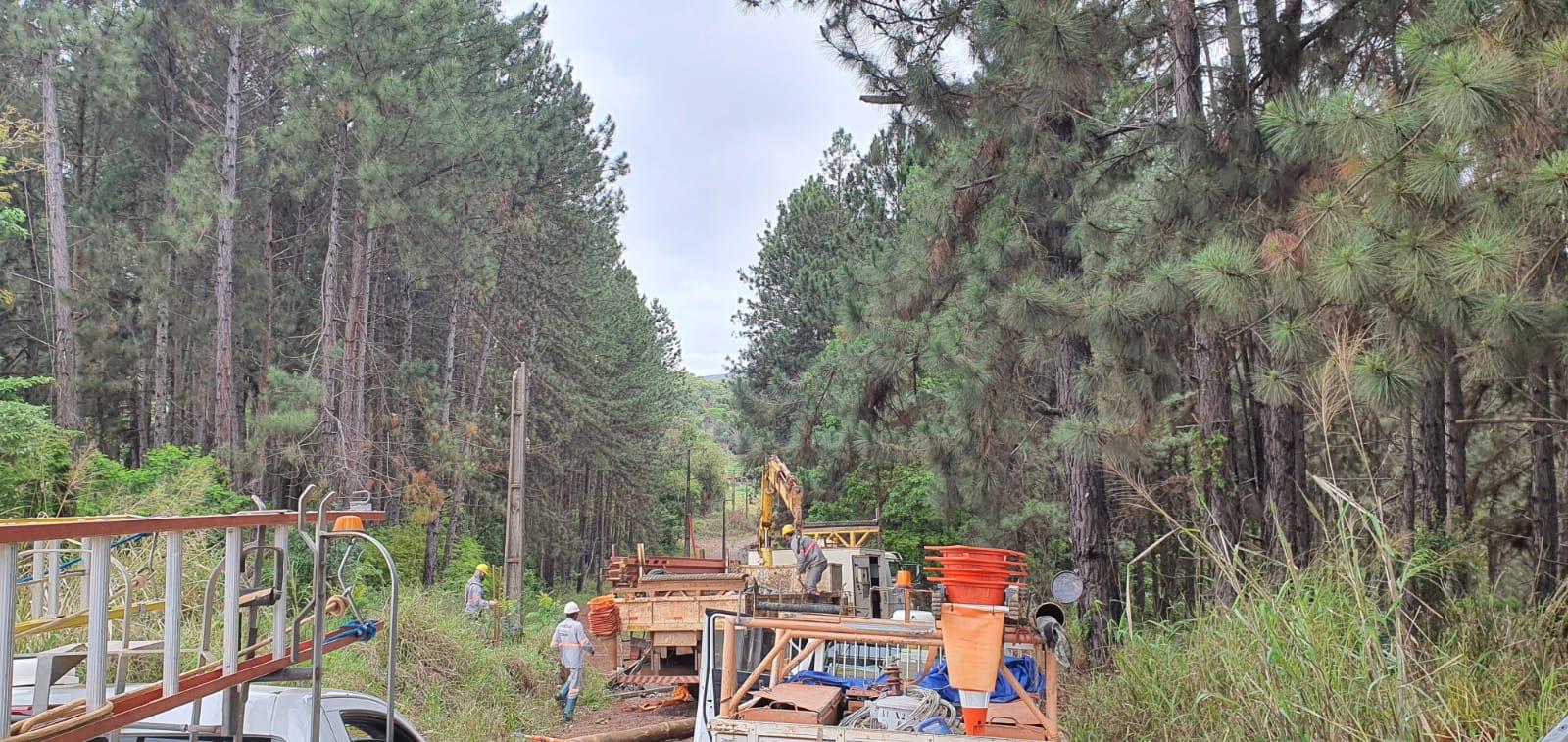 Árvore derrubada na rede interrompe fornecimento de energia em Itabira