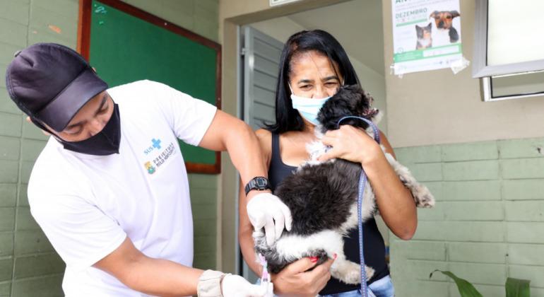 Belo Horizonte: Campanha de Vacinação Antirrábica para cães e gatos é realizada neste sábado